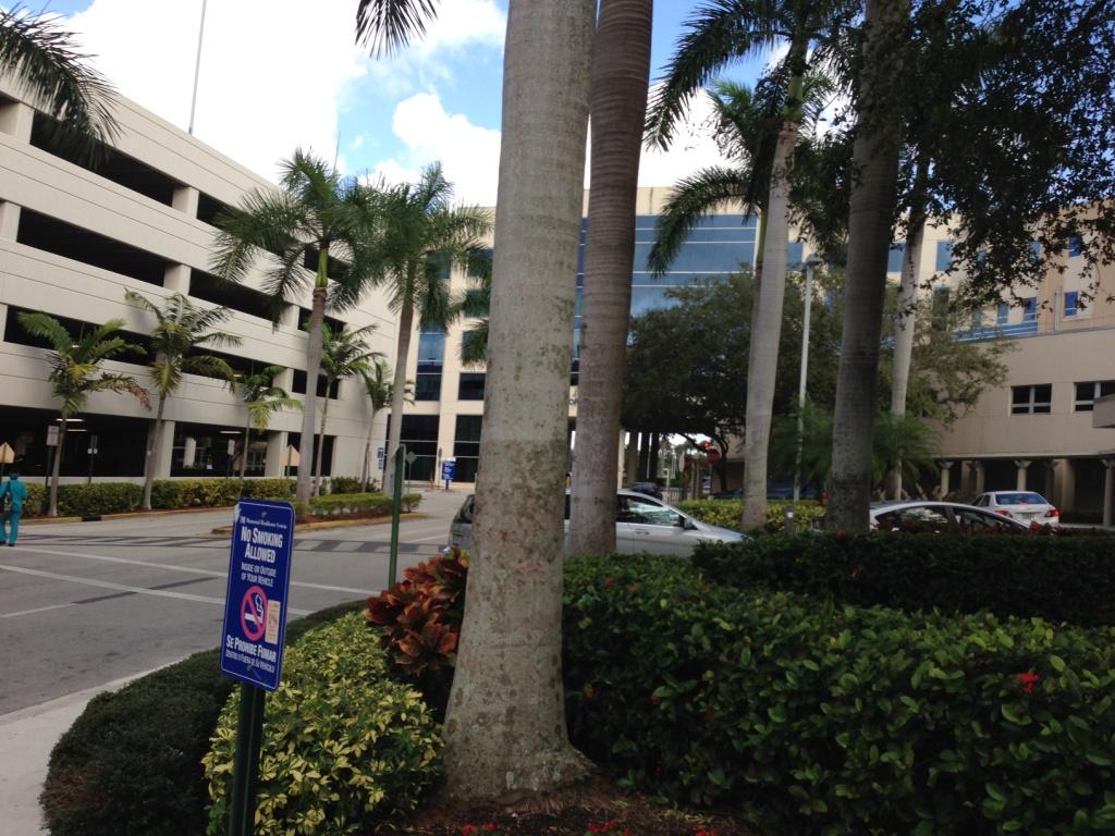 роды в Соединенных Штатах Америки - Memorial Regional Hospital –  основное  медицинское  учреждение в Мемориальной системе здравоохранения США. Этот госпиталь является одним из самых крупных в Майами штат Флорида и за свое, более чем полувековое существование, он завоевал отличную репутацию и по праву считается  отличным  местом  для родов в Америке.  Он имеет многочисленные награды и получил лучшие оценки пациентов из России. Здесь поддерживается приятная  уютная атмосфера, достаточно лишь упомянуть, что родовое отделение носит название «Семейное место рождения». Оно считается лучшим  на побережье Майами перинатальным центром  интенсивной терапии. Женщины в этом госпитале могут получить все виды медицинской помощи, начиная с ранних сроков беременности до самих родов или ЭКО. Для будущих родителей здесь организованы специальные занятия и ряд программ, способствующих их обучению. Они научаться ухаживать за своим малышом, правильно его кормить. Желающих родить в США  пары,  в госпитале встретят очень радушно и можно быть уверенным, что медицинская помощь, оказываемая здесь, будет высококачественной и профессиональной. Беременные женщины могут пройти   фитнесс-подготовку, благодаря которой роды пройдут легко, а восстановительный послеродовой период не будет долгим.